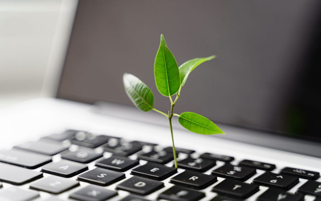 Säästä aikaa ja ympäristöä ProHabitorilla